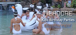 Meadore Agency Kids Birthday Parties