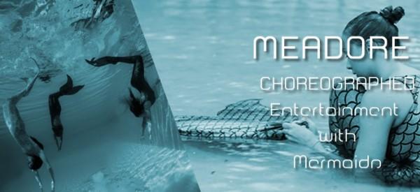 meadore agency mermaids shows